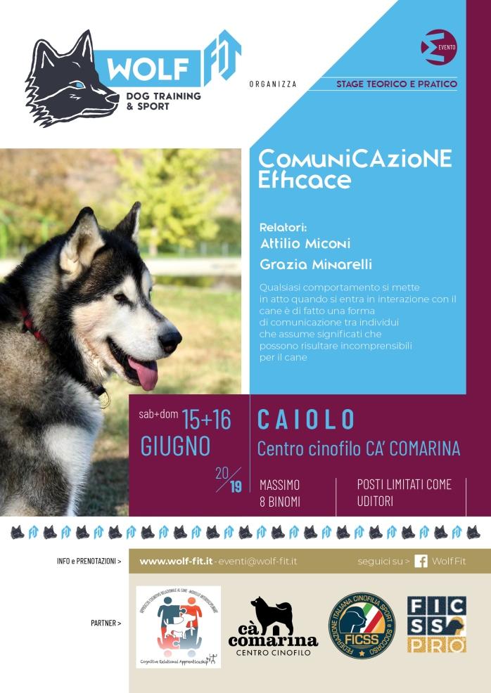 WOLF FIT_Manifesto Evento comunicazione